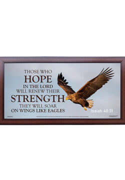 Those Who Hope in the Lord